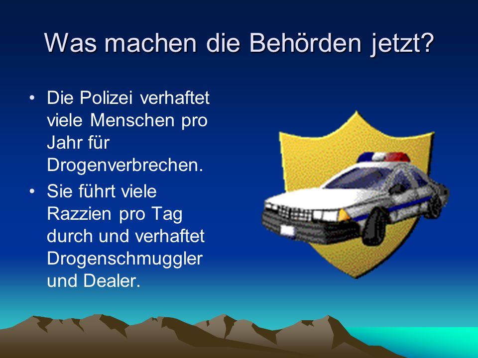 Was machen die Behörden jetzt? Die Polizei verhaftet viele Menschen pro Jahr für Drogenverbrechen. Sie führt viele Razzien pro Tag durch und verhaftet