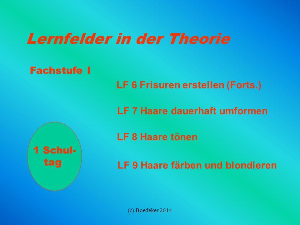 (c) Boedeker 2014 GrundstufeLF 1 In Ausbildung und Beruf orientieren LF 2 Kunden empfangen und betreuen LF 3 Haare und Kopfhaut pflegen LF 4 Frisuren