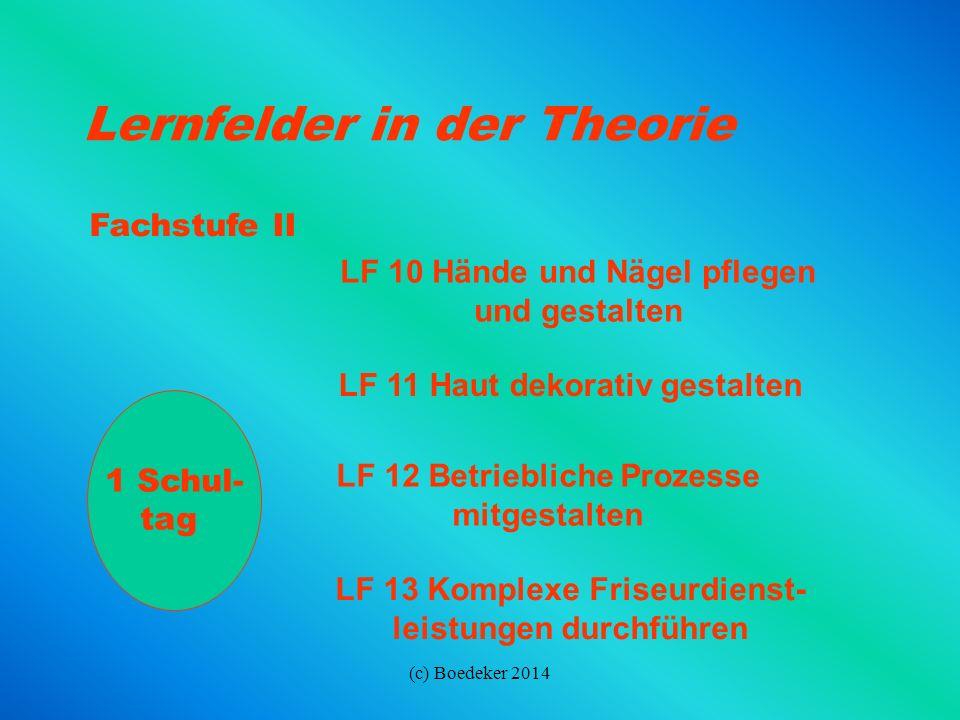 (c) Boedeker 2014 Lernfelder in der Theorie Fachstufe I 1 Schul- tag LF 6 Frisuren erstellen (Forts.) LF 7 Haare dauerhaft umformen LF 8 Haare tönen L