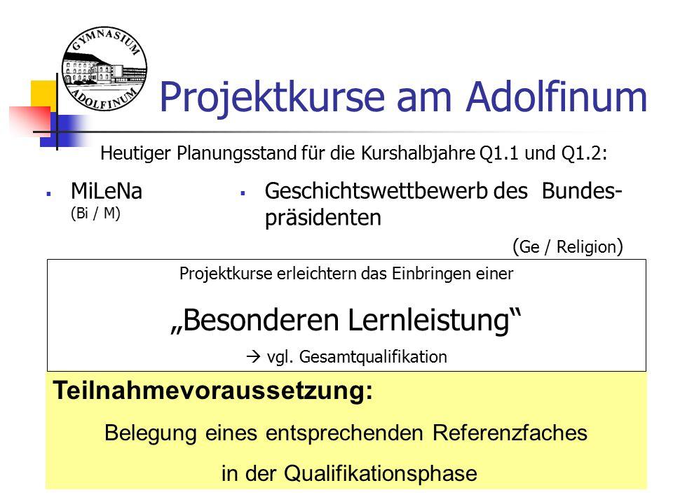 """Projektkurse am Adolfinum Teilnahmevoraussetzung: Belegung eines entsprechenden Referenzfaches in der Qualifikationsphase Heutiger Planungsstand für die Kurshalbjahre Q1.1 und Q1.2:  MiLeNa (Bi / M) Projektkurse erleichtern das Einbringen einer """"Besonderen Lernleistung  vgl."""