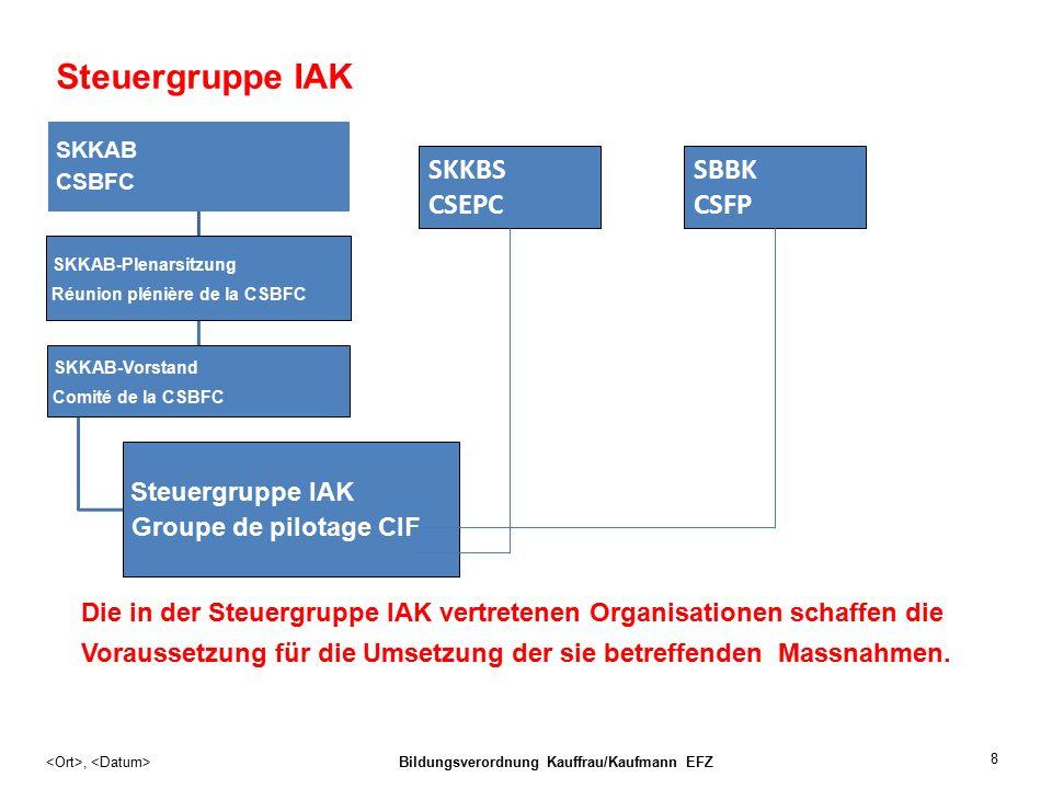 Steuergruppe IAK SKKAB CSBFC SKKAB-Plenarsitzung Réunion plénière de la CSBFC SKKAB-Vorstand Comité de la CSBFC Steuergruppe IAK Groupe de pilotage CIF Die in der Steuergruppe IAK vertretenen Organisationen schaffen die Voraussetzung für die Umsetzung der sie betreffenden Massnahmen.