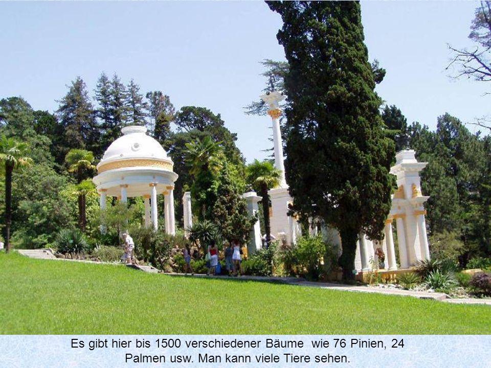 Das Arboretum im Park auf einem Hügel in der Mitte der Stadt ist über 49 Hektar groß.Es wurde am Ende des 19.