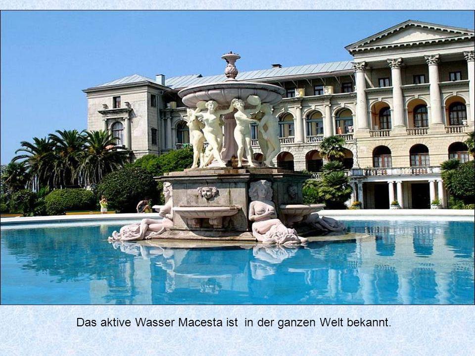 Das aktive Wasser Macesta ist in der ganzen Welt bekannt.