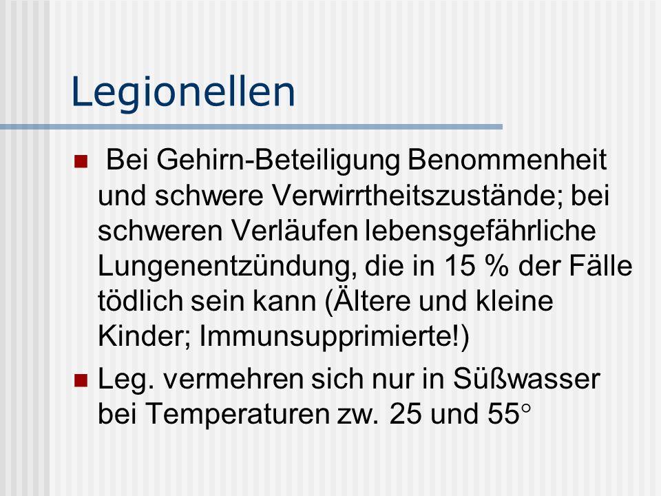 Legionellen Bei Gehirn-Beteiligung Benommenheit und schwere Verwirrtheitszustände; bei schweren Verläufen lebensgefährliche Lungenentzündung, die in 15 % der Fälle tödlich sein kann (Ältere und kleine Kinder; Immunsupprimierte!) Leg.