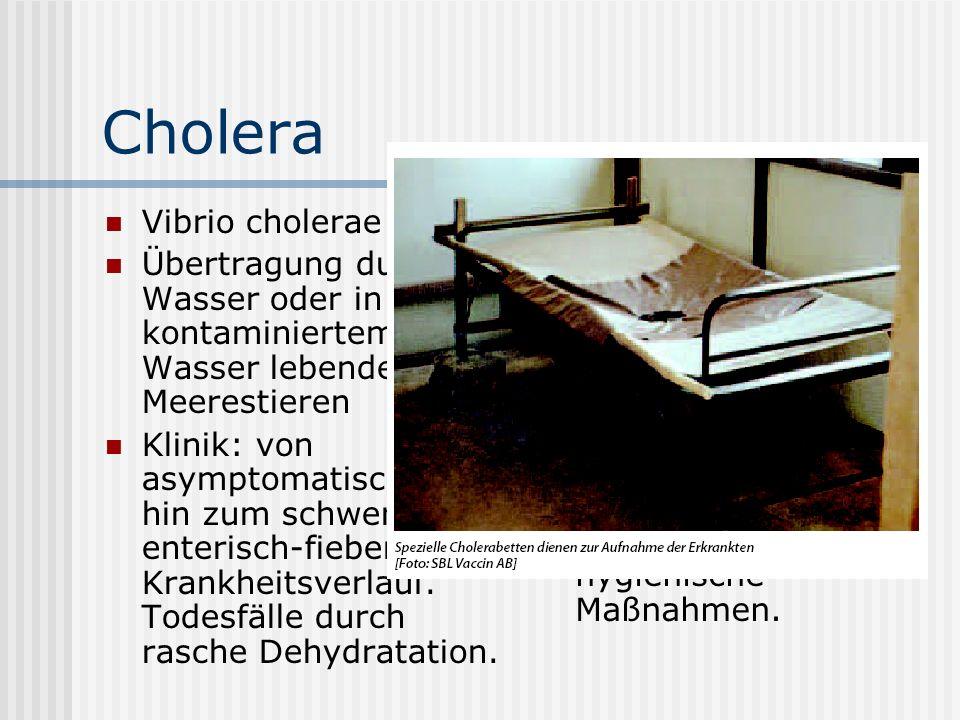 Cholera Vibrio cholerae Übertragung durch Wasser oder in kontaminiertem Wasser lebenden Meerestieren Klinik: von asymptomatisch bis hin zum schwersten enterisch-fieberhaften Krankheitsverlauf.