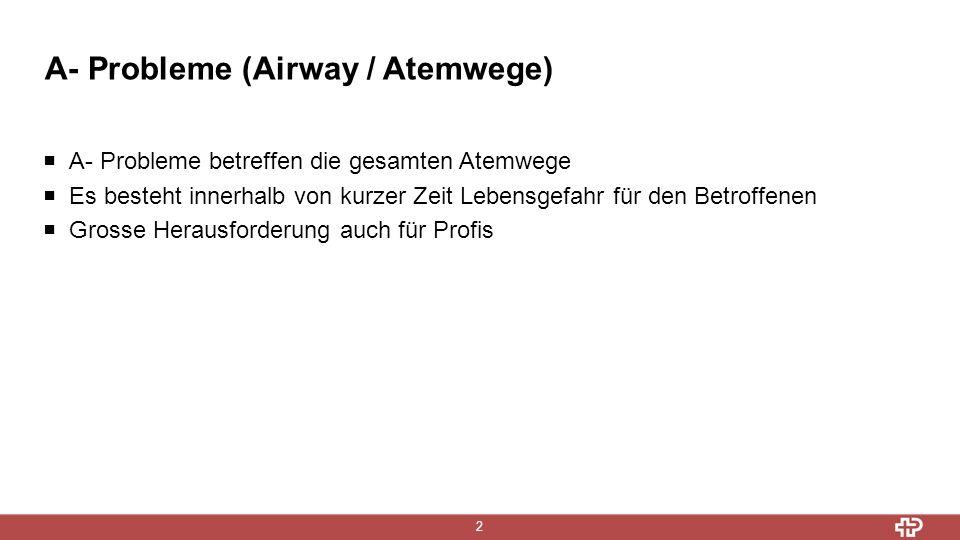 A- Probleme (Airway / Atemwege) 2  A- Probleme betreffen die gesamten Atemwege  Es besteht innerhalb von kurzer Zeit Lebensgefahr für den Betroffenen  Grosse Herausforderung auch für Profis