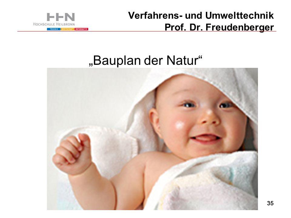 """35 Verfahrens- und Umwelttechnik Prof. Dr. Freudenberger """"Bauplan der Natur"""