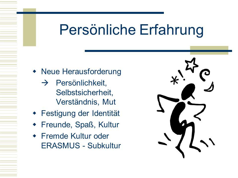 Persönliche Erfahrung  Neue Herausforderung  Persönlichkeit, Selbstsicherheit, Verständnis, Mut  Festigung der Identität  Freunde, Spaß, Kultur  Fremde Kultur oder ERASMUS - Subkultur