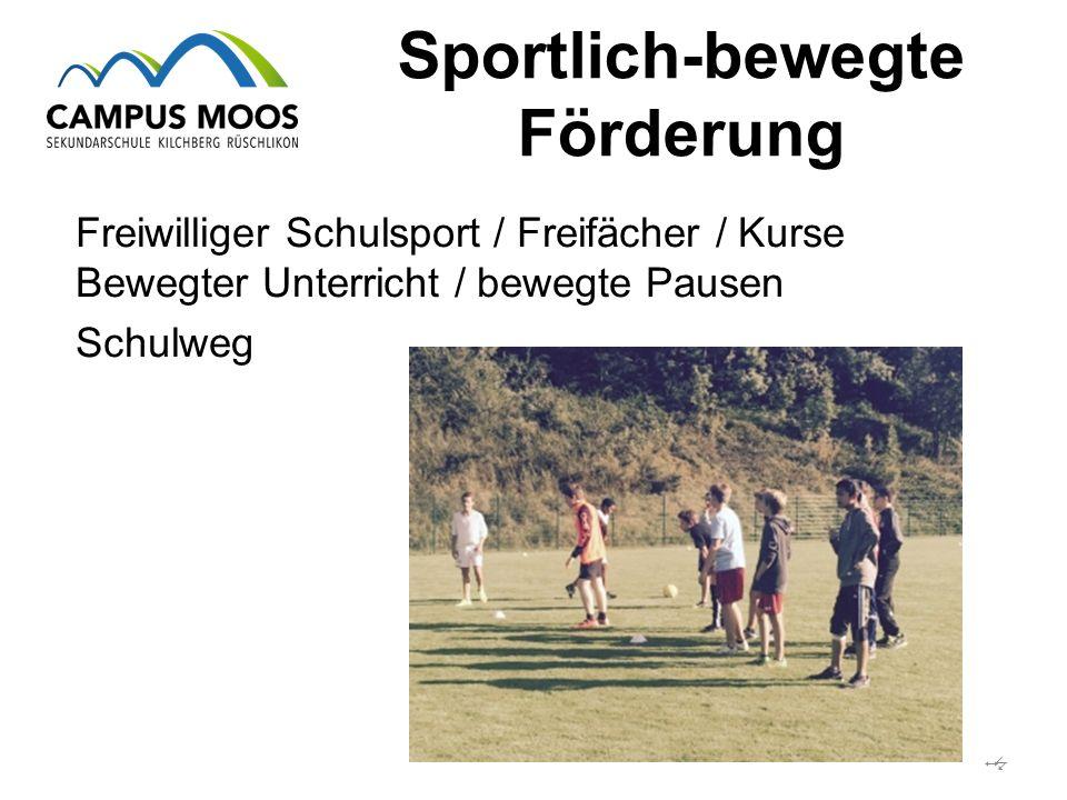 Sportlich-bewegte Förderung  Freiwilliger Schulsport / Freifächer / Kurse Bewegter Unterricht / bewegte Pausen Schulweg