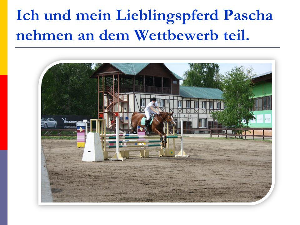 Ich und mein Lieblingspferd Pascha nehmen an dem Wettbewerb teil.