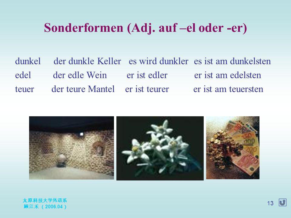 太原科技大学外语系 顾江禾 ( 2006.04 ) 13 Sonderformen (Adj.