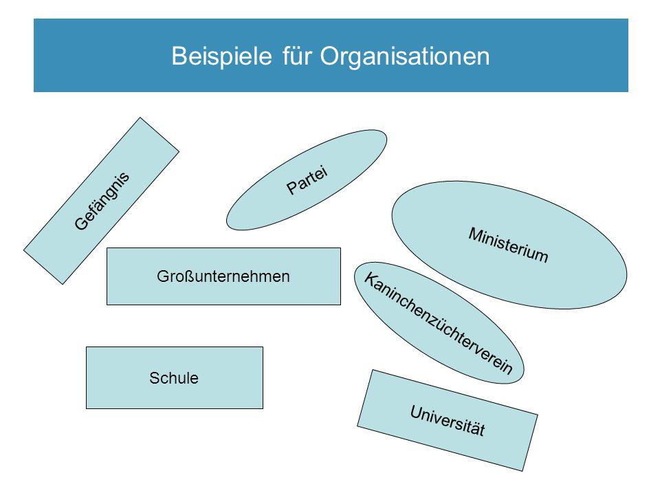 Organisation und Bürokratie Beispiele für Organisationen Schule Ministerium Universität Gefängnis Großunternehmen Partei Kaninchenzüchterverein