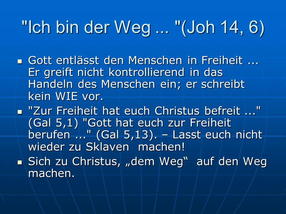 Ich bin der Weg... (Joh 14, 6) Gott entlässt den Menschen in Freiheit...