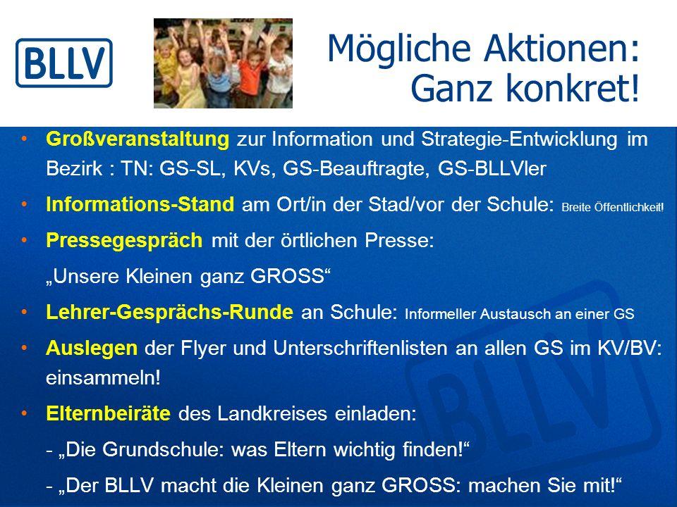 Mögliche Aktionen: Ganz konkret! Großveranstaltung zur Information und Strategie-Entwicklung im Bezirk : TN: GS-SL, KVs, GS-Beauftragte, GS-BLLVler In
