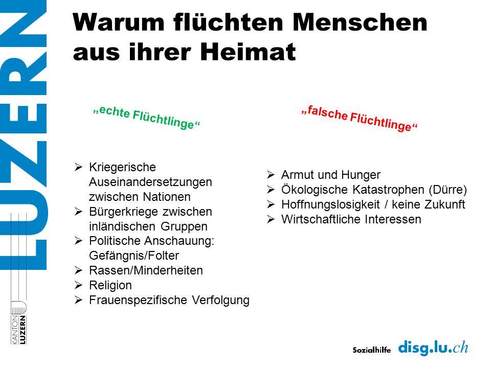 Verteilung Bund/Kanton BundKanton Empfangsstelle Unterbringung/Befragung DISG / AMIGRA Weitere Befragungen durch BFM Unterbringung 1.
