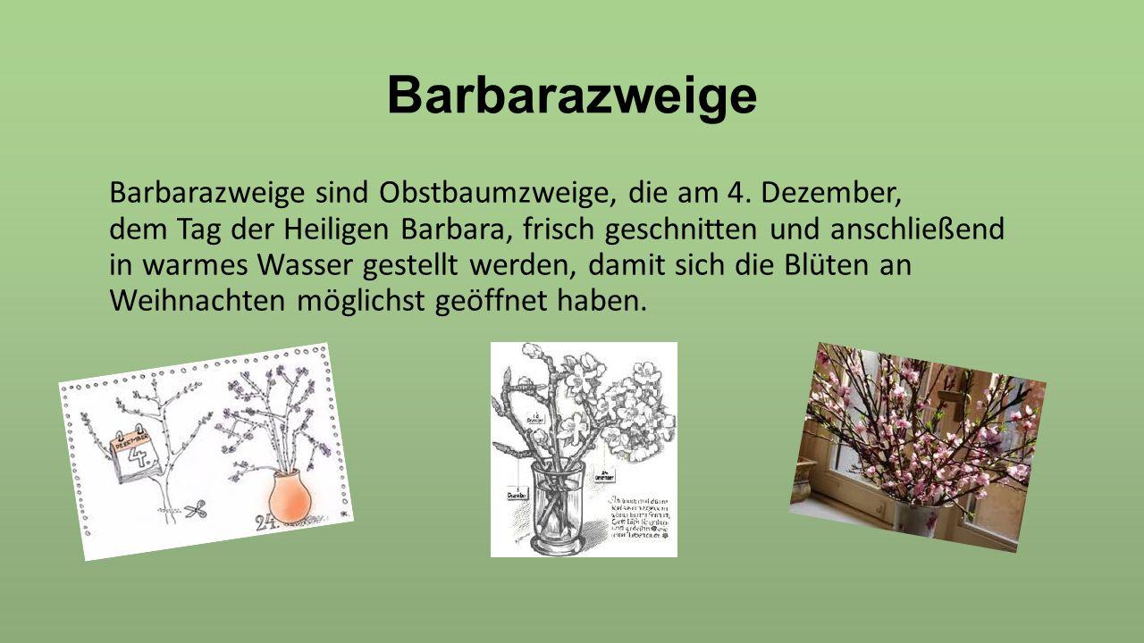Barbarazweige Barbarazweige sind Obstbaumzweige, die am 4. Dezember, dem Tag der Heiligen Barbara, frisch geschnitten und anschließend in warmes Wasse