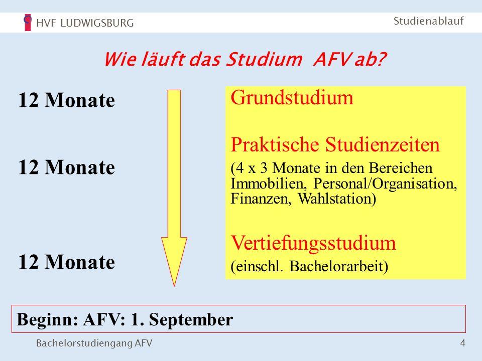HVF LUDWIGSBURG Bachelorstudiengang AFV 4 Studienablauf Wie läuft das Studium AFV ab.