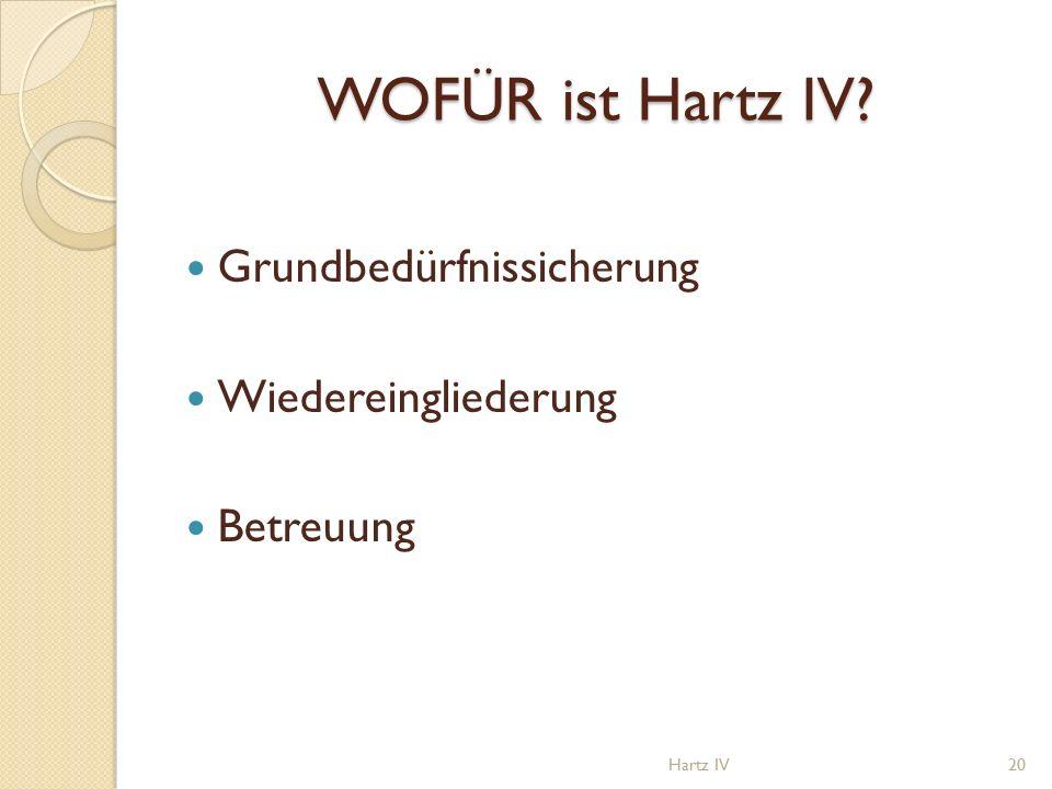 WOFÜR ist Hartz IV? Grundbedürfnissicherung Wiedereingliederung Betreuung Hartz IV20