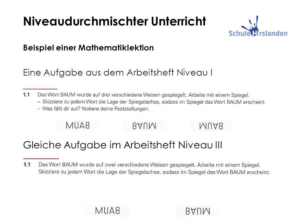 Niveaudurchmischter Unterricht Beispiel einer Mathematiklektion Eine Aufgabe aus dem Arbeitsheft Niveau I Gleiche Aufgabe im Arbeitsheft Niveau III