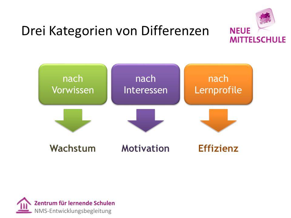 Drei Kategorien von Differenzen nach Vorwissen nach Interessen nach Lernprofile WachstumMotivationEffizienz