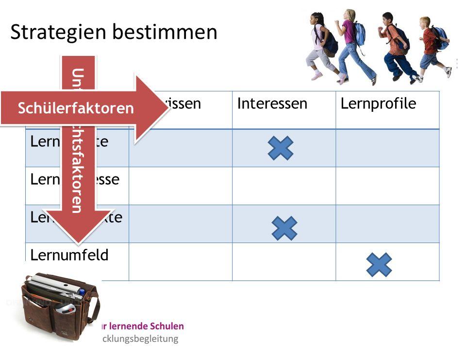 Strategien bestimmen VorwissenInteressenLernprofile Lerninhalte Lernprozesse Lernprodukte Lernumfeld Unterrichtsfaktoren Schülerfaktoren