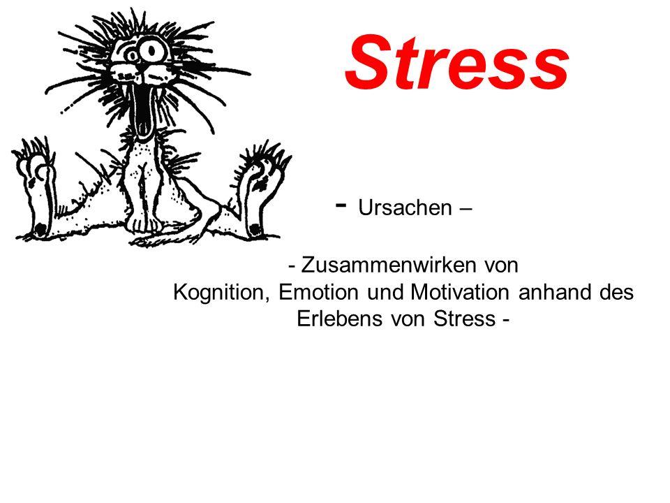 Stress - Ursachen – - Zusammenwirken von Kognition, Emotion und Motivation anhand des Erlebens von Stress -