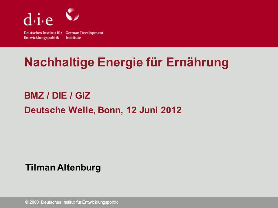 © 2008 Deutsches Institut für Entwicklungspolitik Nachhaltige Energie für Ernährung BMZ / DIE / GIZ Deutsche Welle, Bonn, 12 Juni 2012 Tilman Altenburg