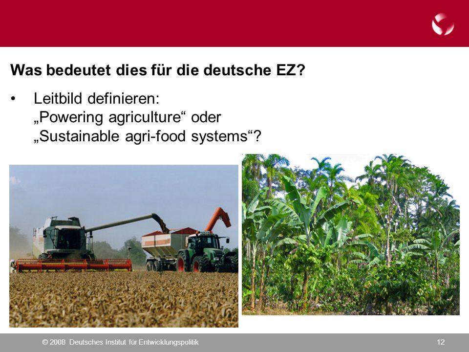 © 2008 Deutsches Institut für Entwicklungspolitik12 Was bedeutet dies für die deutsche EZ.