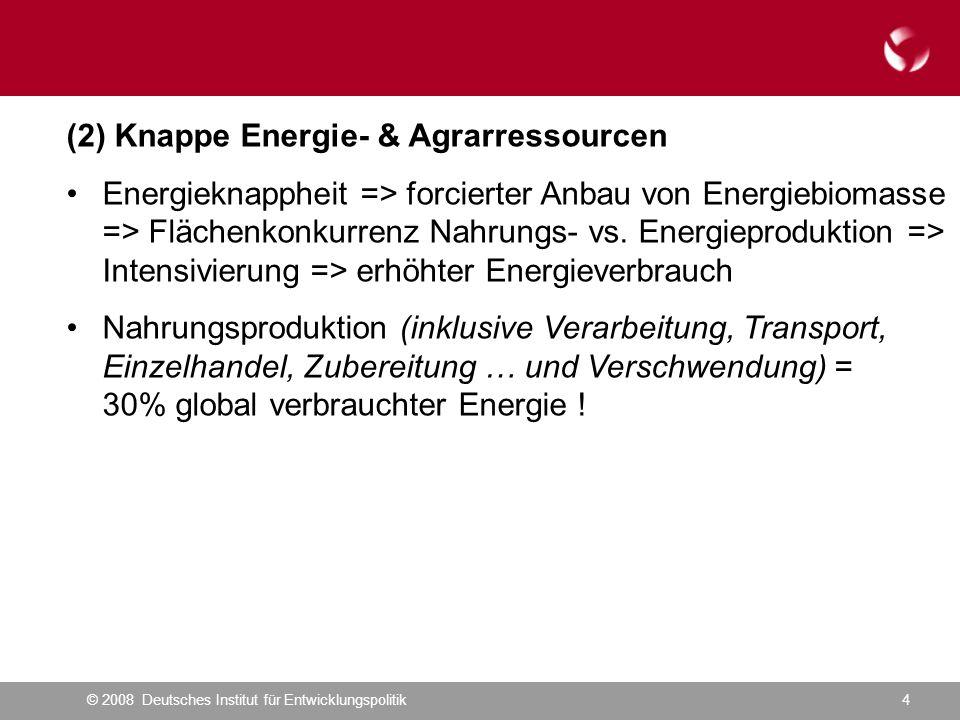 © 2008 Deutsches Institut für Entwicklungspolitik4 (2) Knappe Energie- & Agrarressourcen Energieknappheit => forcierter Anbau von Energiebiomasse => Flächenkonkurrenz Nahrungs- vs.