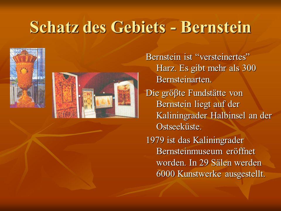 Schatz des Gebiets - Bernstein Bernstein ist versteinertes Harz.