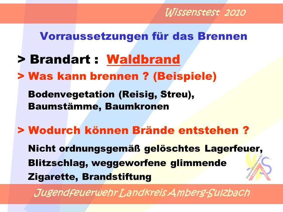 Jugendfeuerwehr Landkreis Amberg-Sulzbach Wissenstest 2010 Vorraussetzungen für das Brennen > Brandart : Waldbrand > Was kann brennen .