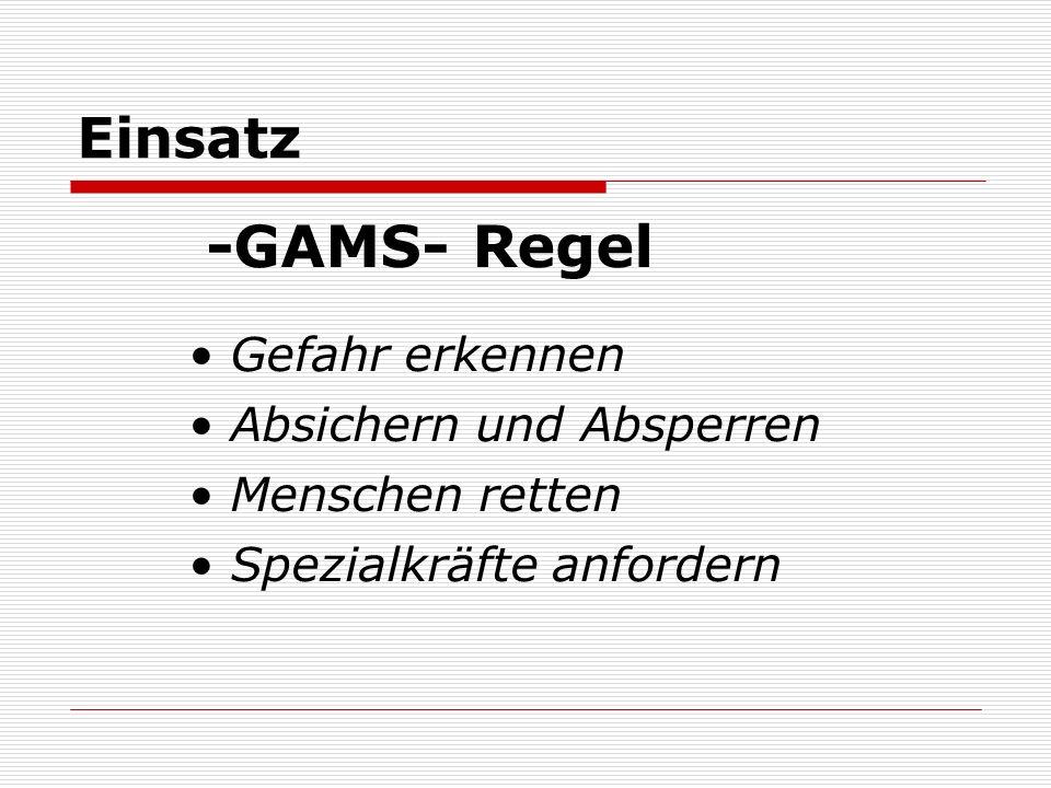 Einsatz -GAMS- Regel Gefahr erkennen Absichern und Absperren Menschen retten Spezialkräfte anfordern