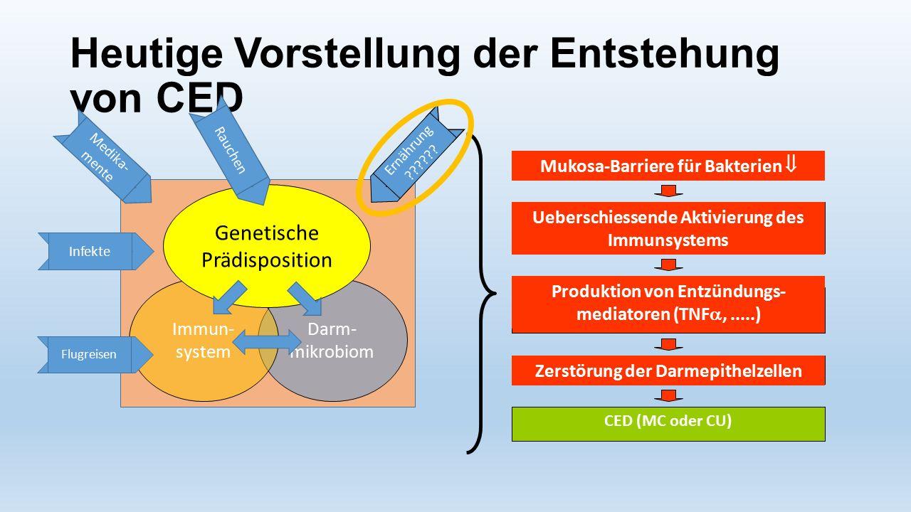 Darm- mikrobiom Immun- system Genetische Prädisposition Heutige Vorstellung der Entstehung von CED Ernährung ?????? Rauchen Infekte Medika- mente Flug