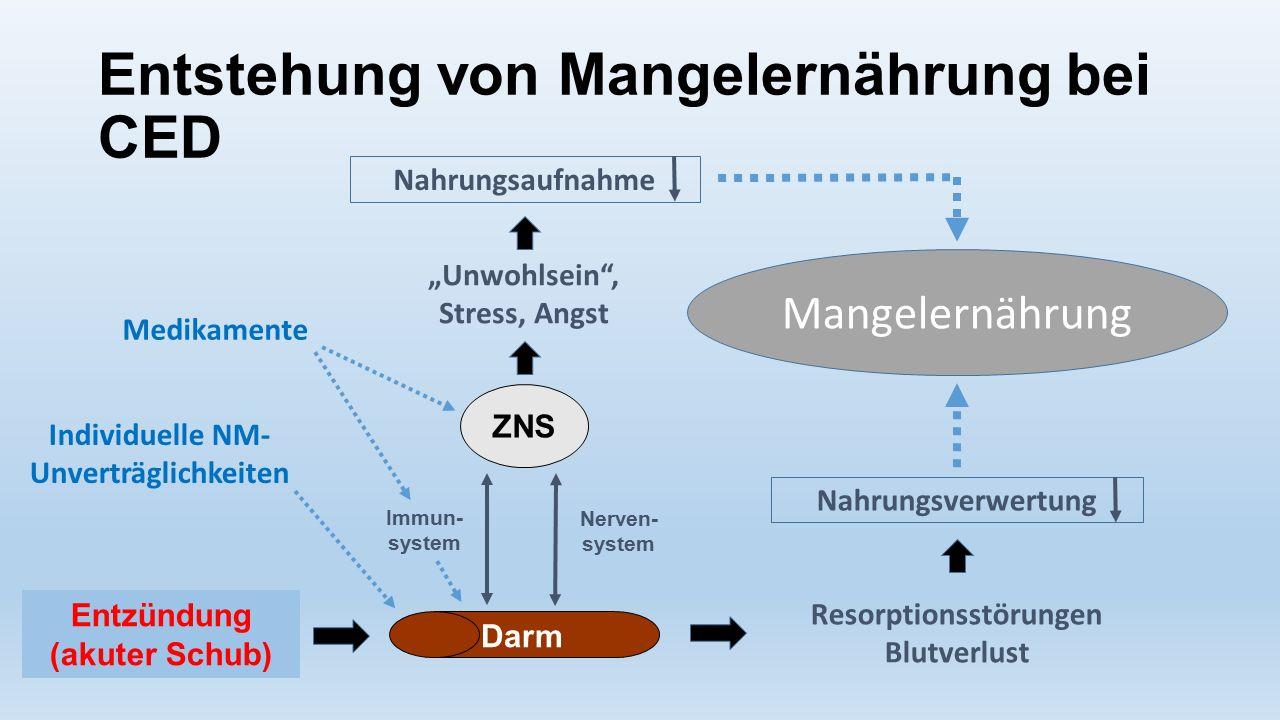 Entstehung von Mangelernährung bei CED ZNS Darm Immun- system Nerven- system Entzündung (akuter Schub) Nahrungsverwertung Nahrungsaufnahme Resorptions