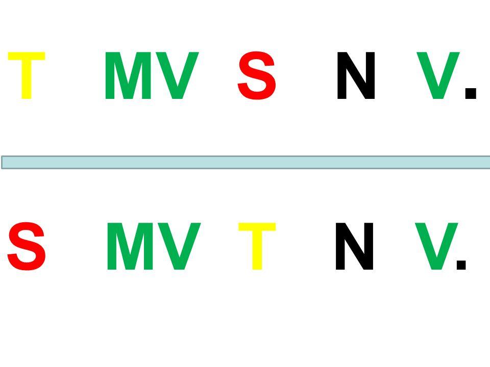 T MV S N V. S MV T N V.