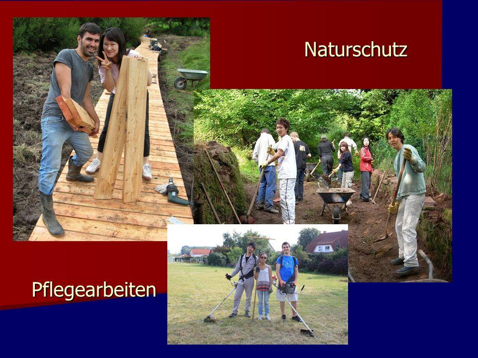 Naturschutz Pflegearbeiten