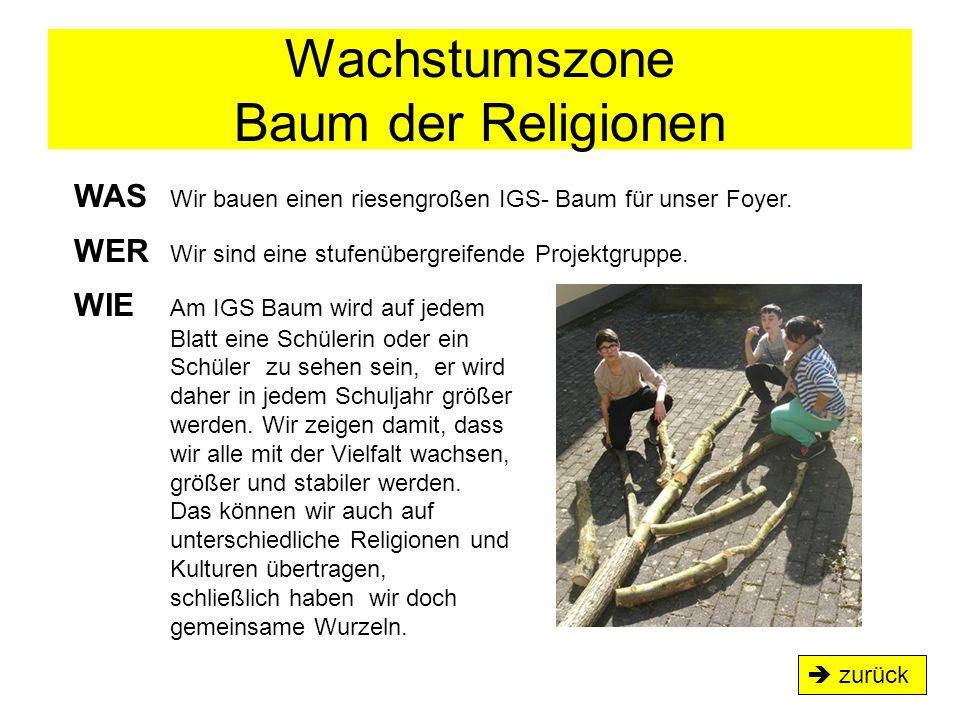 Wachstumszone Baum der Religionen WAS Wir bauen einen riesengroßen IGS- Baum für unser Foyer. WER Wir sind eine stufenübergreifende Projektgruppe. WIE
