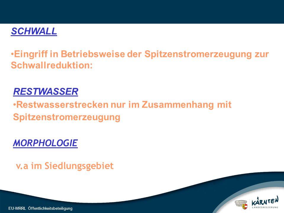 19 EU-WRRL Öffentlichkeitsbeteiligung SCHWALL Eingriff in Betriebsweise der Spitzenstromerzeugung zur Schwallreduktion: RESTWASSER Restwasserstrecken nur im Zusammenhang mit Spitzenstromerzeugung.