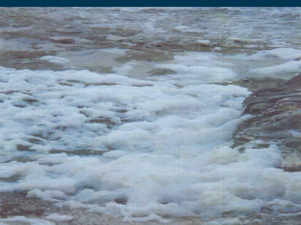 23 EU-WRRL Öffentlichkeitsbeteiligung Ökologischer Zustand Fließgewässer Kärnten 3.250 Kilometer Oberflächengewässer bewertet 1.216 Wasserkörper