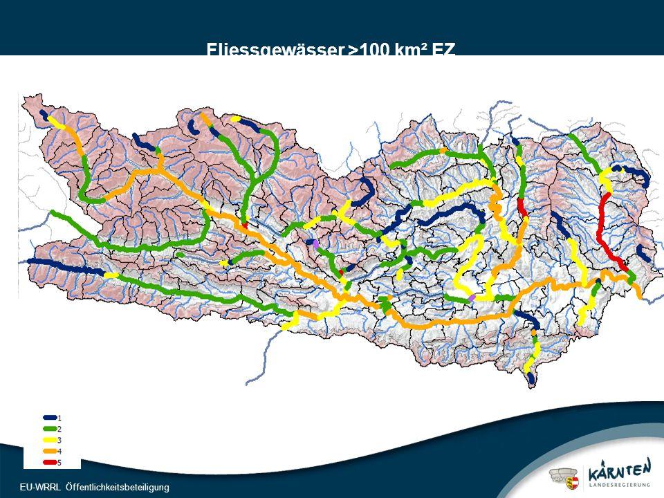24 EU-WRRL Öffentlichkeitsbeteiligung Fliessgewässer >100 km² EZ Zustandsbewertung Ökologie