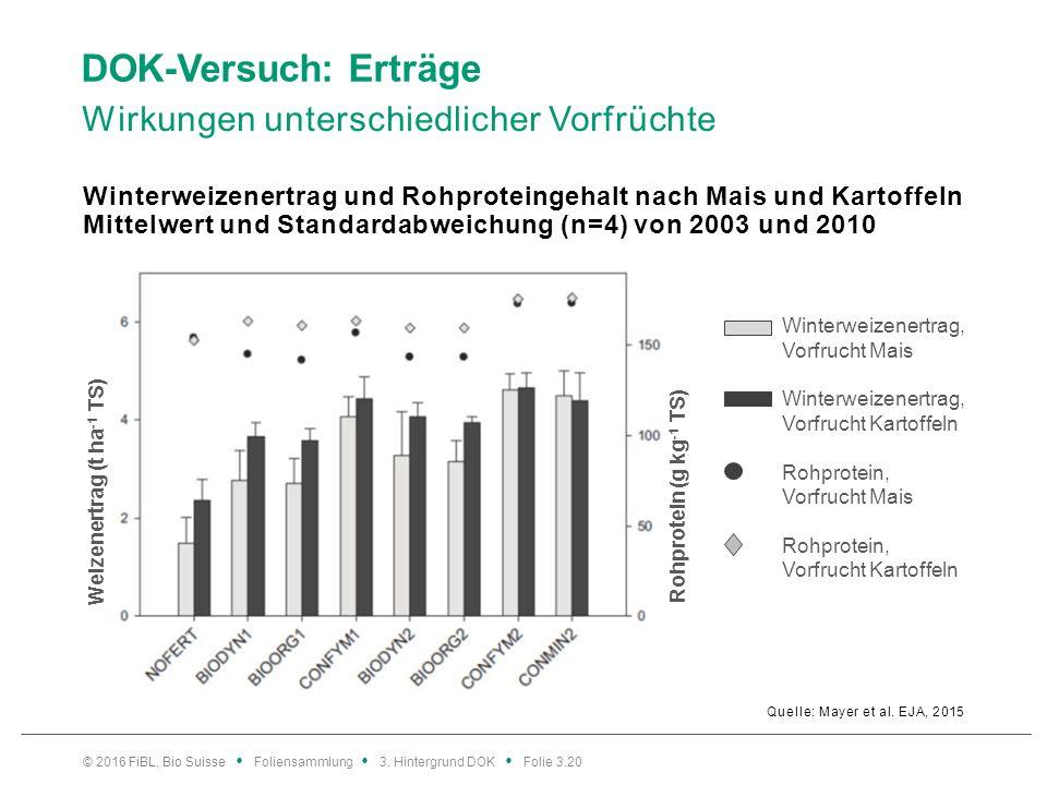 DOK-Versuch: Erträge Wirkungen unterschiedlicher Vorfrüchte Quelle: Mayer et al.
