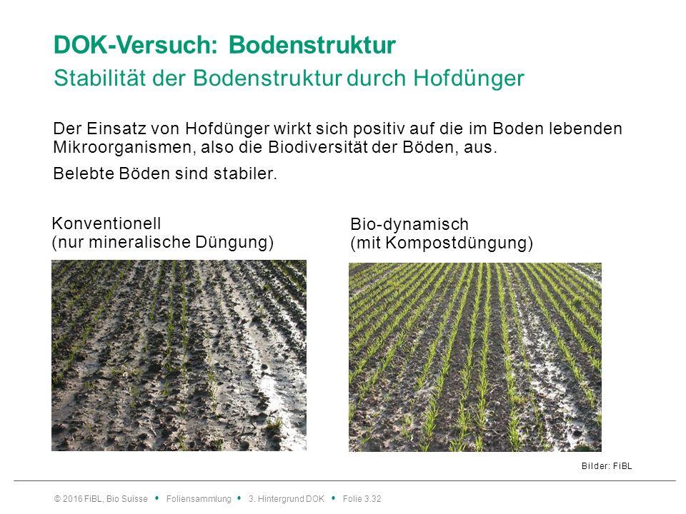 DOK-Versuch: Bodenstruktur Stabilität der Bodenstruktur durch Hofdünger Bilder: FiBL Der Einsatz von Hofdünger wirkt sich positiv auf die im Boden lebenden Mikroorganismen, also die Biodiversität der Böden, aus.