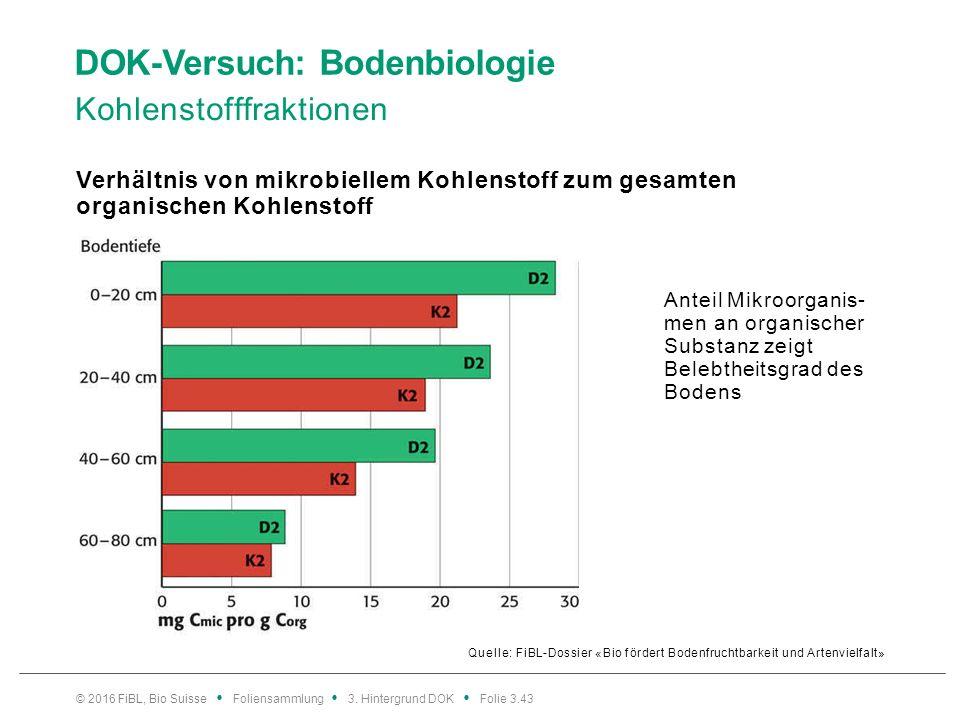 DOK-Versuch: Bodenbiologie Kohlenstofffraktionen Quelle: FiBL-Dossier «Bio fördert Bodenfruchtbarkeit und Artenvielfalt» Verhältnis von mikrobiellem Kohlenstoff zum gesamten organischen Kohlenstoff © 2016 FiBL, Bio Suisse Foliensammlung 3.