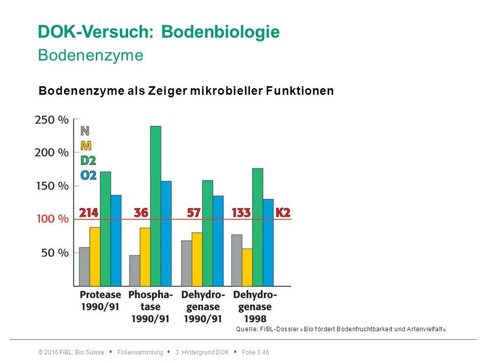 DOK-Versuch: Bodenbiologie Bodenenzyme Quelle: FiBL-Dossier «Bio fördert Bodenfruchtbarkeit und Artenvielfalt» Bodenenzyme als Zeiger mikrobieller Funktionen © 2016 FiBL, Bio Suisse Foliensammlung 3.