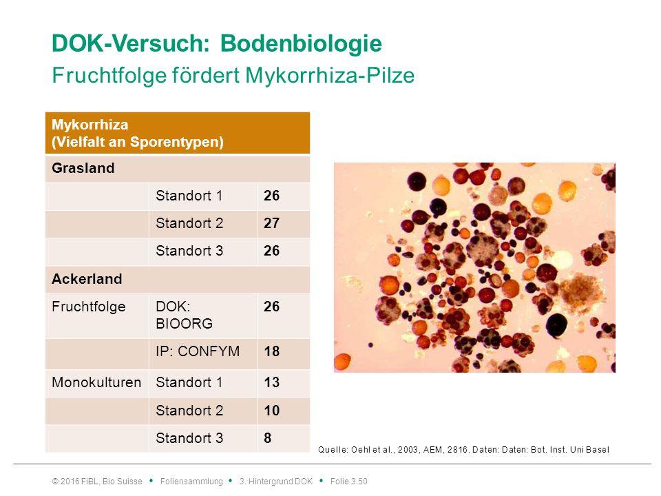 DOK-Versuch: Bodenbiologie Fruchtfolge fördert Mykorrhiza-Pilze Quelle: Oehl et al., 2003, AEM, 2816.