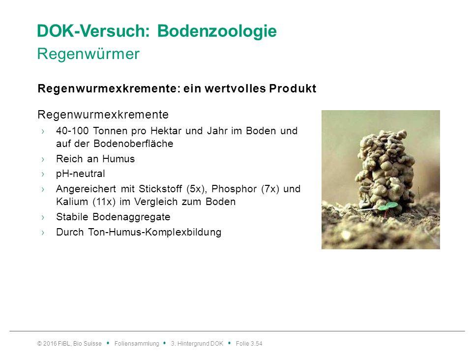 DOK-Versuch: Bodenzoologie Regenwürmer Regenwurmexkremente: ein wertvolles Produkt © 2016 FiBL, Bio Suisse Foliensammlung 3.