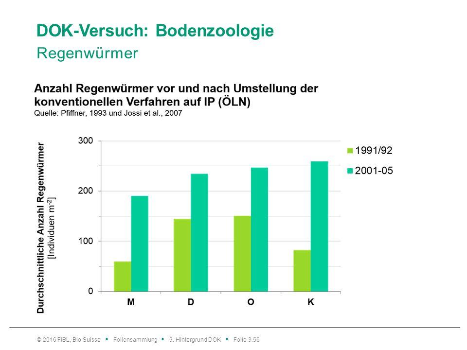 DOK-Versuch: Bodenzoologie Regenwürmer © 2016 FiBL, Bio Suisse Foliensammlung 3.