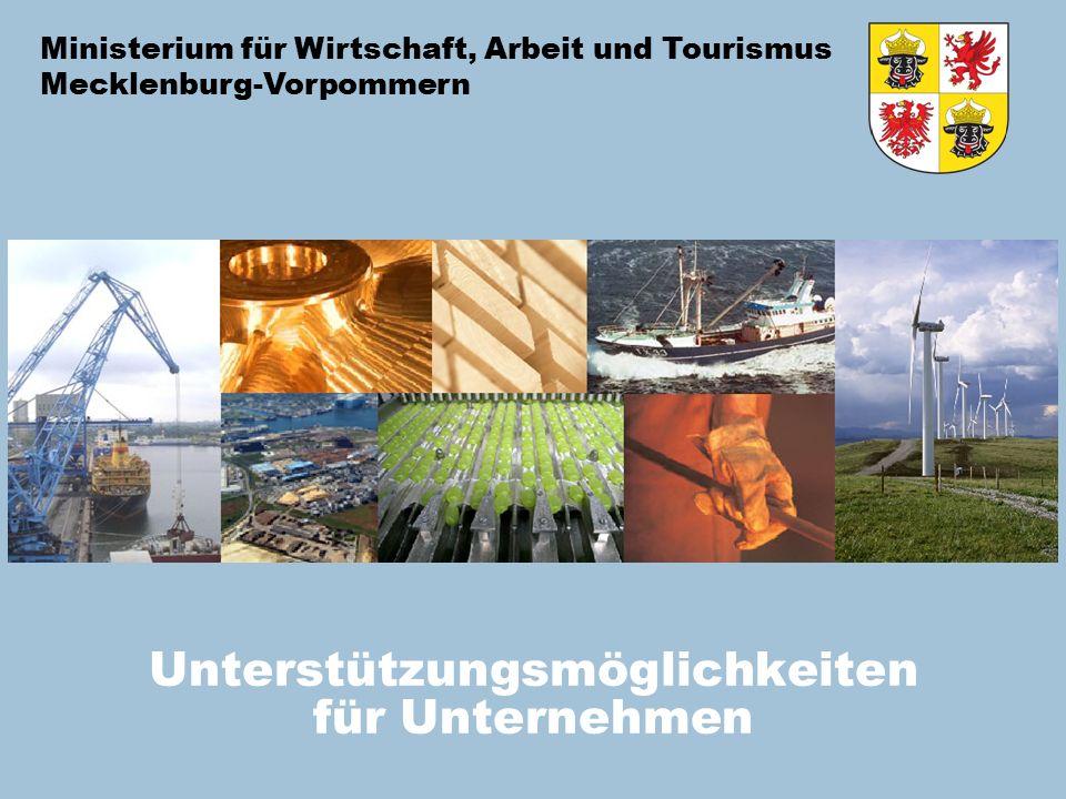 Ministerium für Wirtschaft, Arbeit und Tourismus Mecklenburg-Vorpommern Unterstützungsmöglichkeiten für Unternehmen