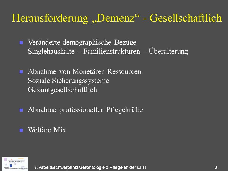 """© Arbeitsschwerpunkt Gerontologie & Pflege an der EFH 3 Herausforderung """"Demenz"""" - Gesellschaftlich n Veränderte demographische Bezüge Singlehaushalte"""