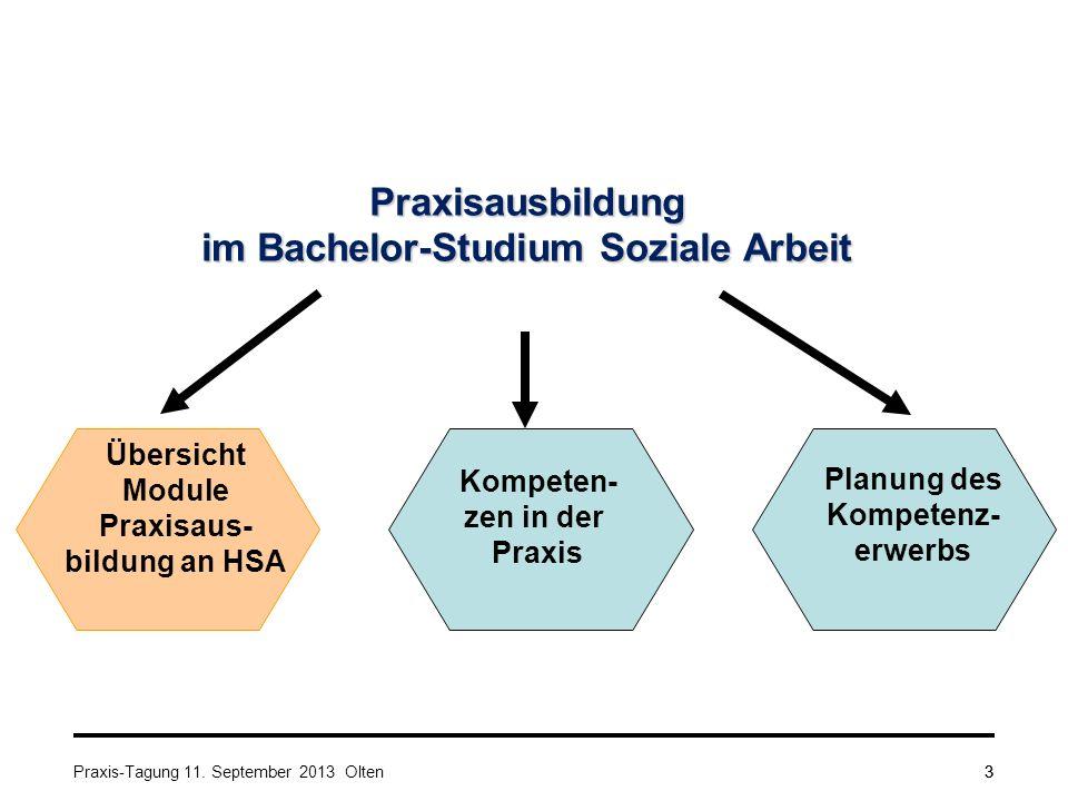 3 Praxisausbildung im Bachelor-Studium Soziale Arbeit Kompeten- zen in der Praxis Übersicht Module Praxisaus- bildung an HSA Planung des Kompetenz- erwerbs Praxis-Tagung 11.